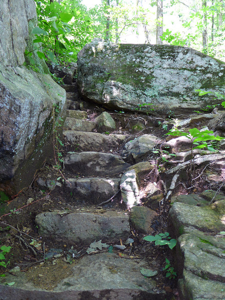 <h1>Rock Steps</h1>.....Along the one and a half mile trail up to Rainbow Falls.
