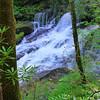 <h1>Downstream from Dargans Cascade</h1>