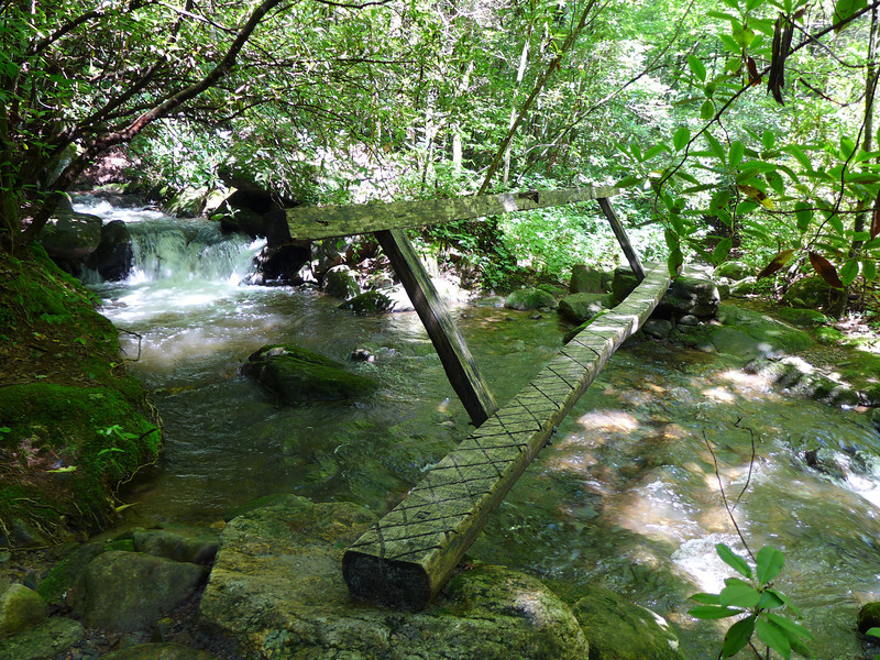 <h1>One of the Log Bridges</h1>.... along the trail up to Rainbow Falls.