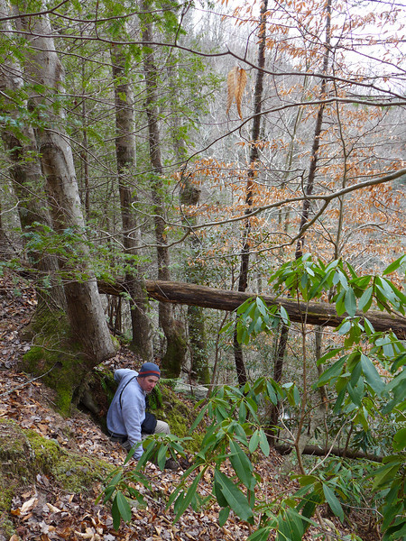 <h1>Darrin</h1>...scouting out a bushwhack route to the base of Laurel Fork Falls.