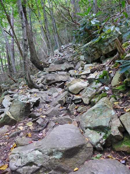 <h1>Long, Rocky Descent</h1>The AT descends 400 feet in about 0.2 mile, the entire stretch along rocky terrain like this!!  (Yes, this is the trail!!)