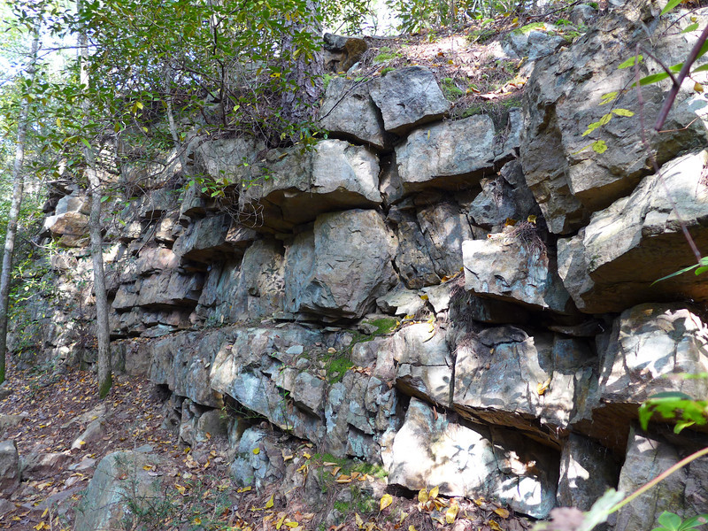One of many rock walls the trail takes you along.