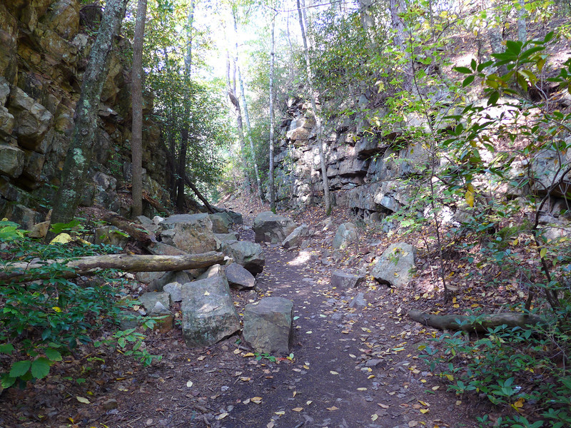 <h1>Appalachian Trail</h1>....along the route to Laurel Falls.  Very VERY rocky the entire way!