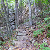 <h1>Long, Rocky Staircase</h1>The AT descends 400 feet in about 0.2 mile, the entire stretch along rocky terrain like this!!