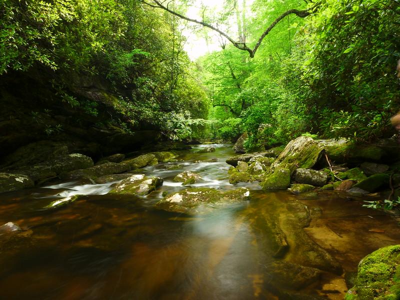 Incredibly gorgeous creek