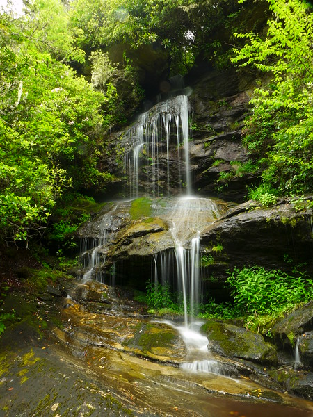Lichen Falls!!