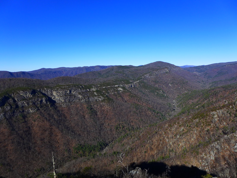 Looking north up Linville Gorge