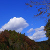 <h1>Clouds and Blue Sky</h1>Above the Chattooga River.