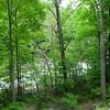 Nolichucky River