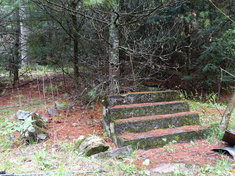 <h1>Concrete Steps</h1>All that remain from the Cove's church.  This is just hundred yards or so from the school building (next photo).  Photo from 2009.