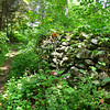 Trail along the old stone fence