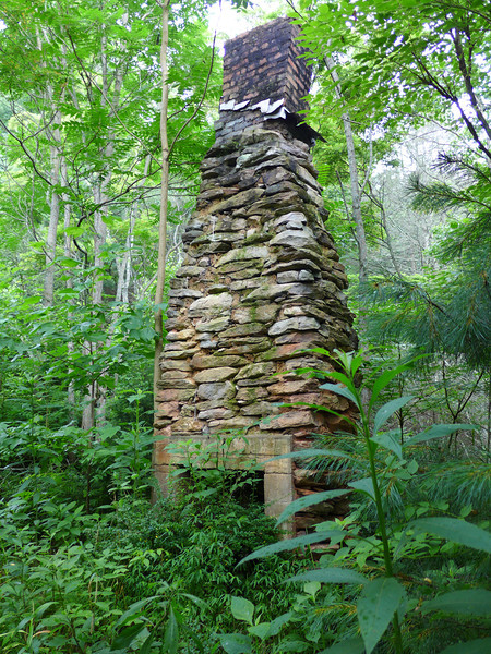 <h1>Old Chimney</h1>All that remains of this house is this chimney.  There were the remains of an old bedframe nearby.