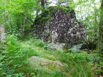 Large, lichen covered rock