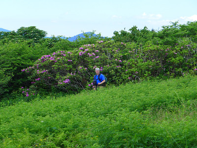 Andy among the Rhodos on Locust Knob