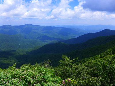 Views of Asheville Watershed