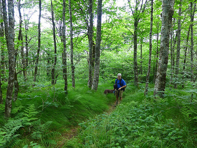 Andy  on Trail near the top of Locust Knob