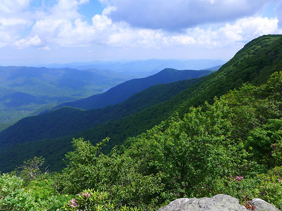 View of Asheville watershed