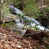 <h1>Boone and Kona</h1>....doing zoomies along the creek's edge in front of Evan's Cascade.