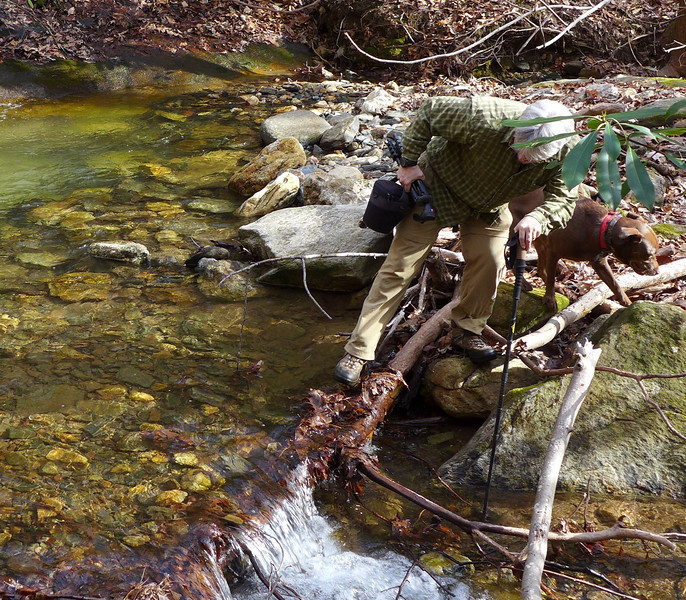 <h1>Andy</h1>....making his way gingerly across Oil Camp Creek, at the base of Evan's Cascade (which is just upstream a short distance.