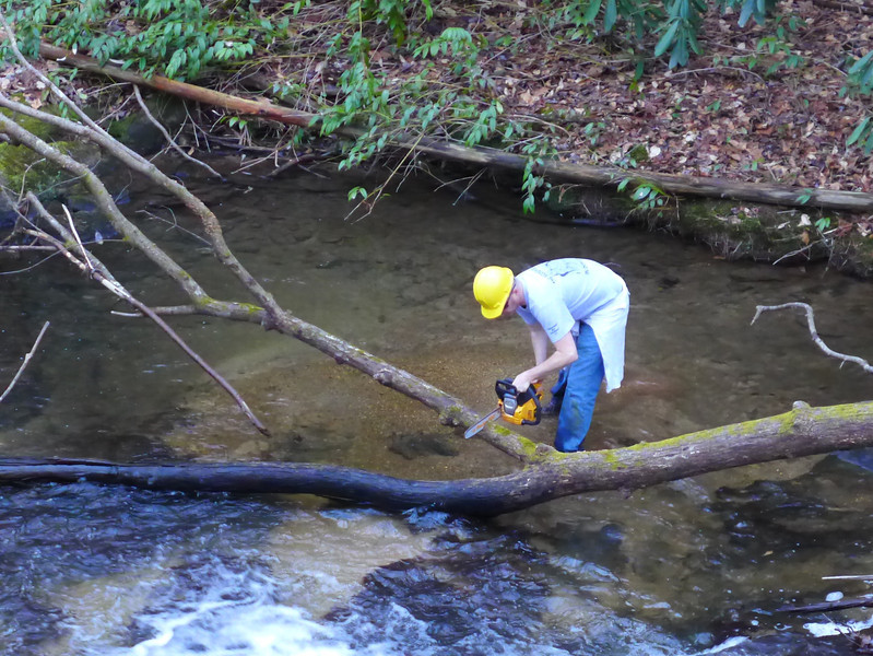 <h1>Darrin</h1>...clearing a deadfall that is lying right in front of a cascade.  I nominate him for the Johnny Corn Landscaping Award!
