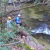 <h1>Heading down to Wattacoo Creek</h1> There is a cascade just upstream from where Andy, Darrin, and Evan are decending down the bank.  You'll note Darrin is wearing a hard hat ... see next photo as to why!