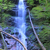 <h1>Waterfall on Little Fall Branch</h1>This waterfall is 4.4 miles from the Max Patch Parking area, just off Cold Springs Creek Road.  It is a short 5 or 10 minute walk from the parking area, which is just past the Horse Camp area.  The falls are about 40 feet high.
