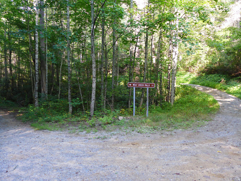 "<h1>Parking area for Wolf Creek Falls</h1>If you drive here from Max Patch road, by the time you get here, you're more than ready to get out of the car and hike some.   These falls were only 9.5 miles from Max Patch, but it took me close to 45 or 50 minutes to drive those nine and a half miles!  You also pass this point if you drive to the top of Shut In Road in Madison County, NC and hike from there (less than a mile, one way).   If you hike up from the trailhead on Wolf Creek Road (4 miles, one way), you come out right at the falls, bypassing this intersection.  <b><u><a href=""http://www.brendajwiley.com/gps/wolf_creek.html"">Map showing all three routes here</a></u></b>."