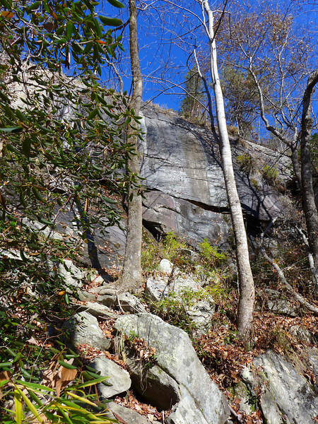 <h1>A portion of a rock wall</h1>....which Naturaland Trust Trail winds along as it makes its way along the base of Caesar's Head.