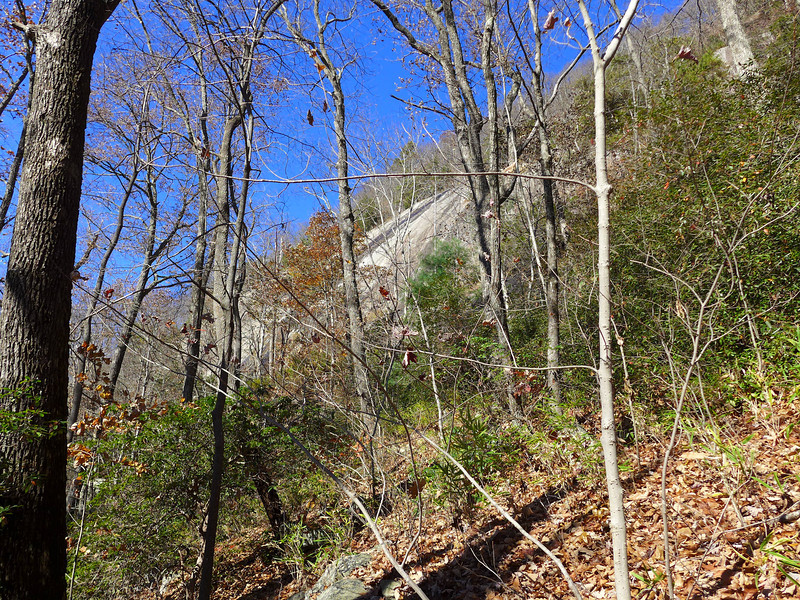 <h1>More Rocky Cliffs</h1>....which Naturaland Trust Trail winds along as it makes its way along the base of Caesar's Head.