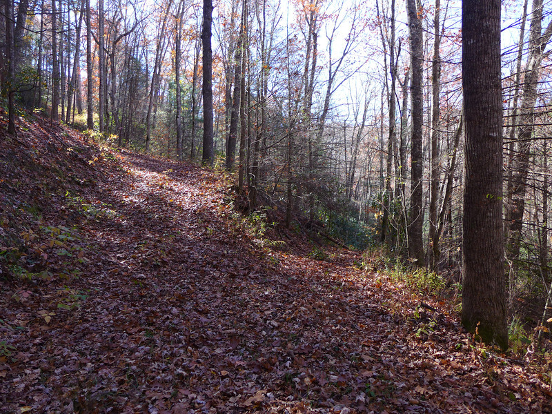 "One of the several old roads that branch off the ""main"" road/trail that descends down Eyelet Ridge to Bear Creek Lake."