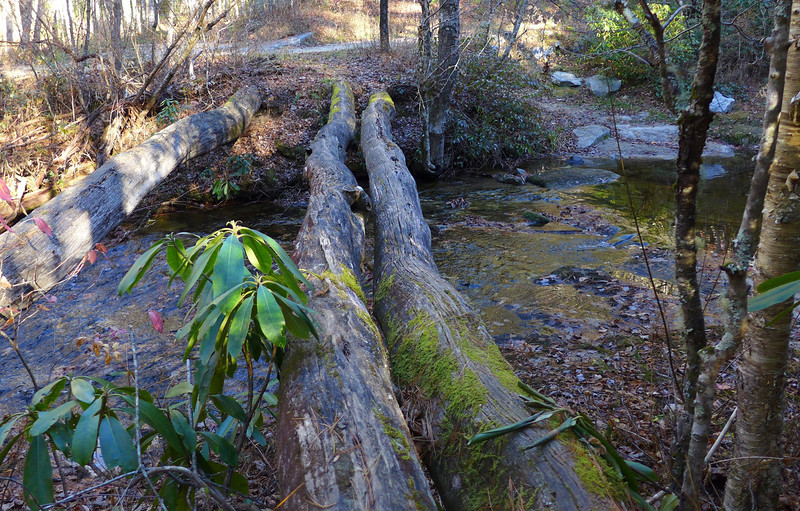 "<h1>Log Bridge</h1>Rich, <b><u><a href=""http://www.ncwaterfalls.com/nellies1.htm"" target=""_blank"">on his webpage</a></u></b>, says to cross Flat Creek, you can ""take your chances on the logs or wade"".   I didn't quite know what he meant till I SAW those logs!!  About 4 feet up from the river, round, nothing to hang on to!!    Thankfully, the water level was low enough that was able to rock hop."