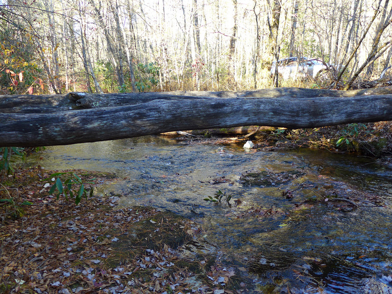 <h1>A view from the creek</h1>...of the log bridge crossing of Flat Creek.