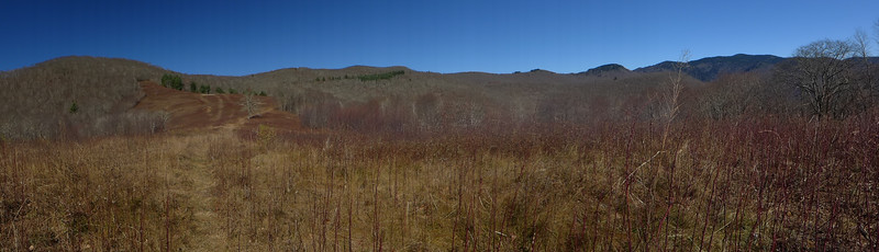 Panorama from the Meadow