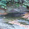 <h1>The Pothole</h1>Close up.  The water is a lot deeper here than the rest of the creek.   See next photo for just HOW deep.