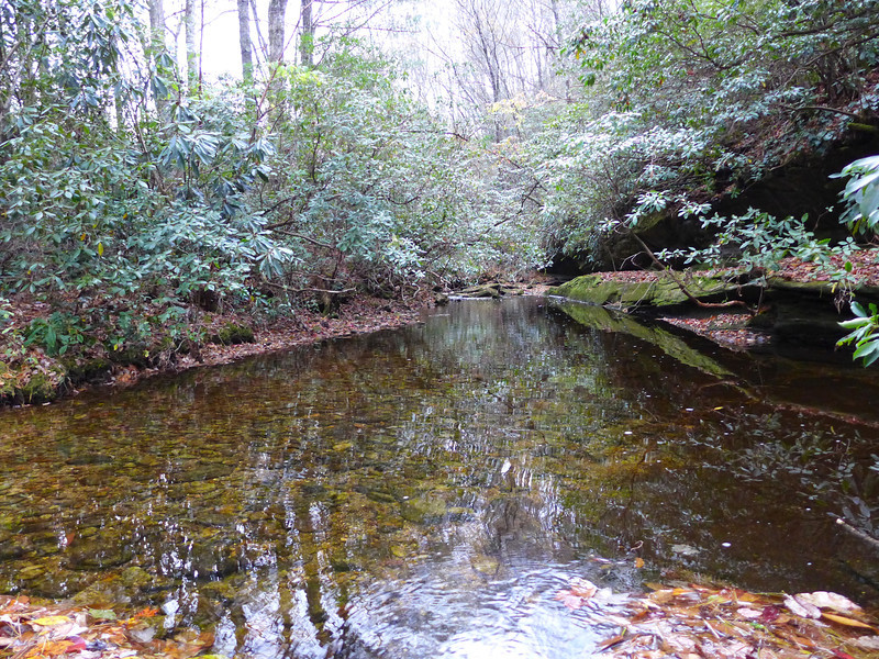 <h1>Greenland Creek</h1>We ended our hike by following Mac's Gap Trail back to the Cold Mountain Trailhead, crossing the still, mirror like Greenland Creek.