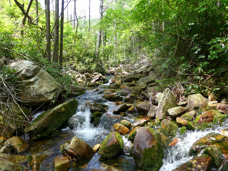 Black Fork of Paddy Creek