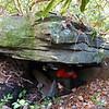 Mark, under one of the huge boulders.