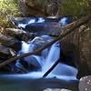 Emory Creek at around 1170' elevation