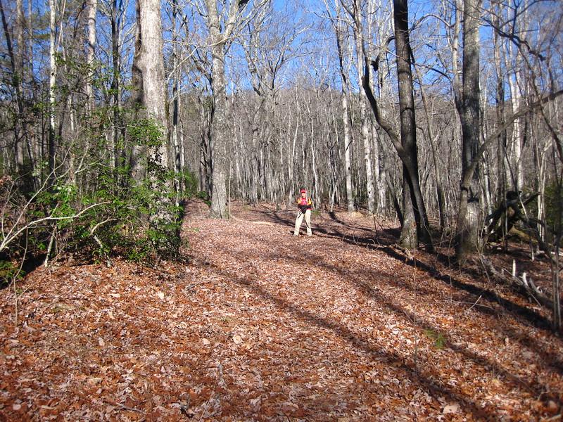 Alewine road / trail