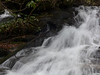 """Another view of the two """"halves"""" of the stream which makes up Reece Place Falls.  The upper left hand corner shows a peek of the left hand half.<br><br>Feb, 2014"""