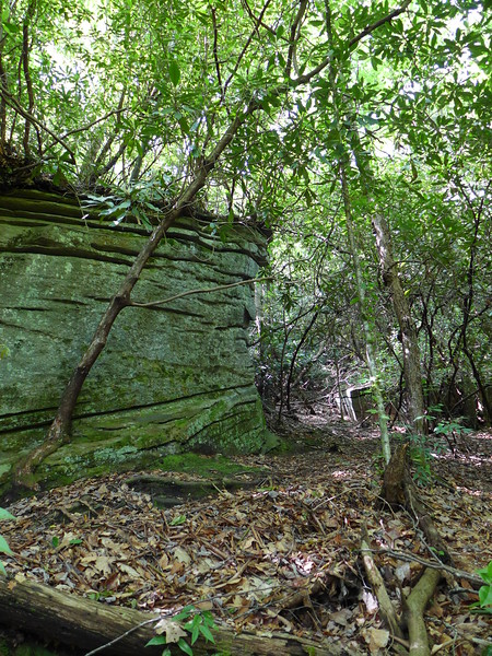 Large Rock Boulders along the trail