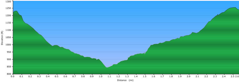 """<h1>Elevation Profile</h1>...of the hike shown in this gallery.  See <b><u><a href=""""http://www.brendajwiley.com/gps/riley_moore.html"""" target=""""_blank"""">this webpage for an interactive map</a></u></b>."""
