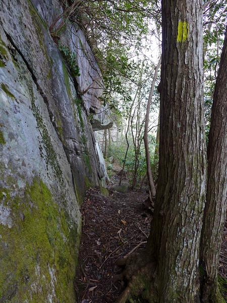 Rim of the Gap Trail