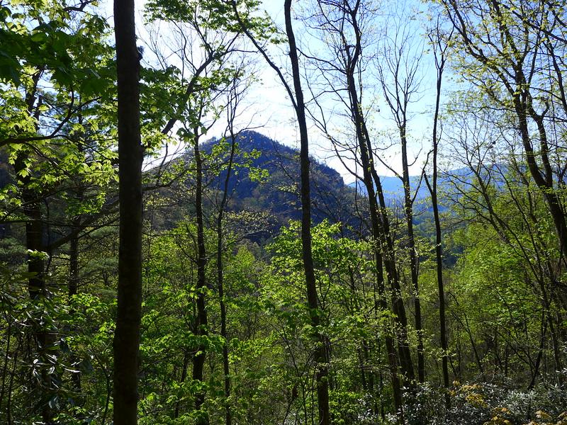 Whitehouse Mountain