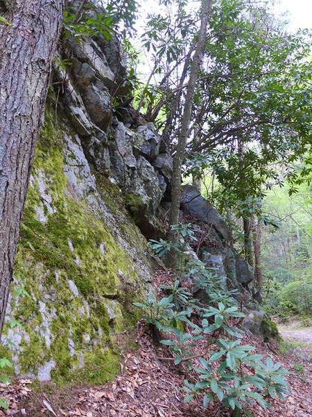 Rocky Cliffs along the main trail.