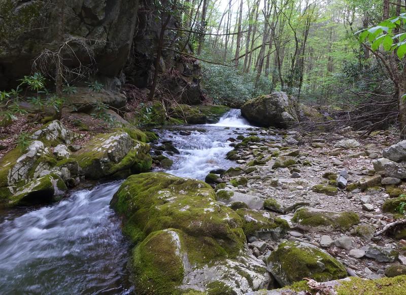 Along Rocky Fork Creek