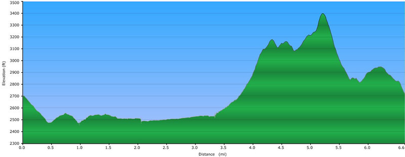 <h1>Elevation Profile</h1>Of the hike highlighted in this gallery.   Starting and ending at Turkey Pen Trailhead, I went first along South Mills River Trail, then up Wagon Road Trail, then left on Turkey Pen Gap Trail back to the Trailhead.  The super steep descent between mile 5.0 and 5.5 is the trail up to/down from Sharpy Mountain ... tough in either direction.