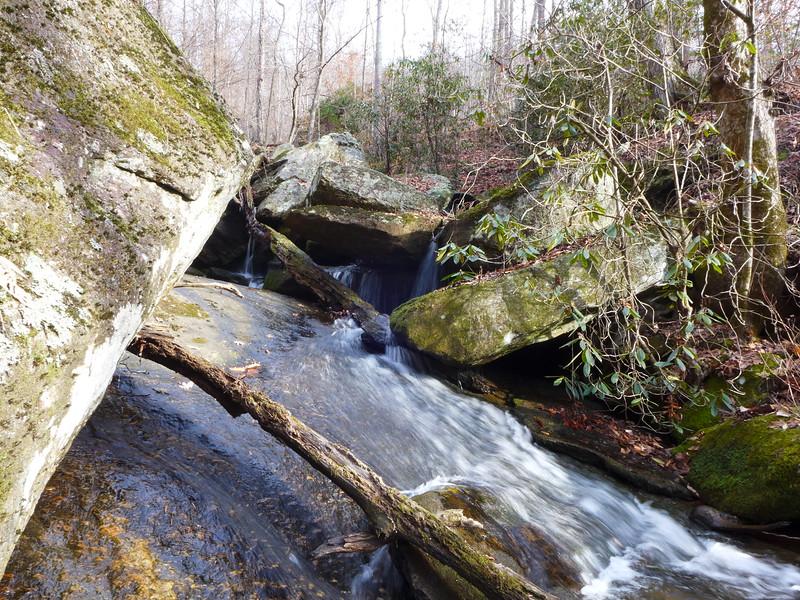 Upper section of Negro Creek