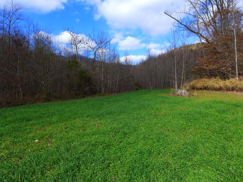 .....a couple lush, open fields.