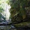 Looking downstream